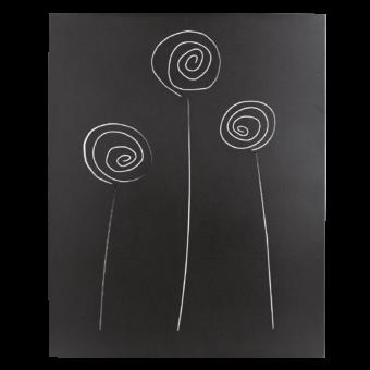 027.10234..n3-protection-murale-selene-noir-givre-face